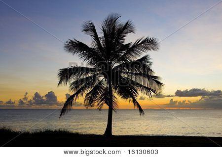 sunset over Caribbean Sea, Barbados