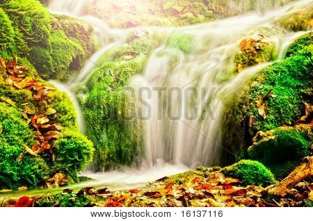 waterfall in forest, autumn