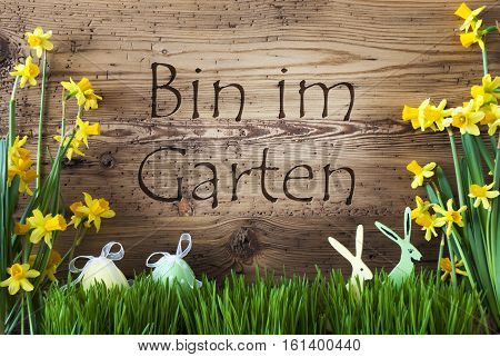 Wooden Background With German Text Bin Im Garten Means I Am In The Garden. Easter Decoration Like Easter Eggs And Easter Bunny. Yellow Spring Flower Narcisssus With Gras. Card For Seasons Greetings