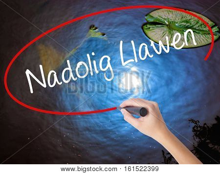 Woman Hand Writing Nadolig Llawen (happy Christmas In Welsh) With Marker Over Transparent Board