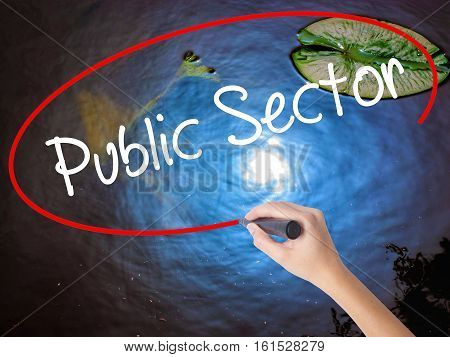 Woman Hand Writing Public Setor With Marker Over Transparent Board.