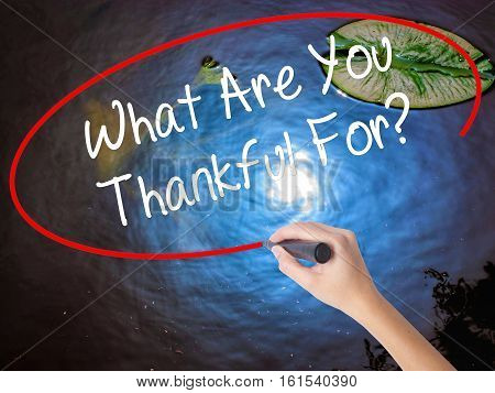 Woman Hand Writing What Are You Thankful For? With Marker Over Transparent Board