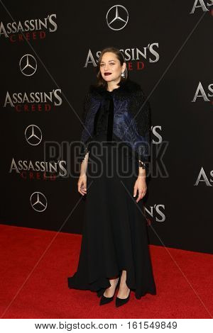 NEW YORK-DEC 13: Actress Marion Cotillard attends the screening of
