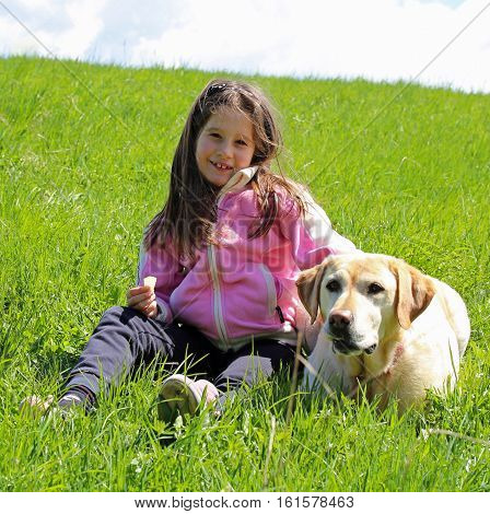 Little Girl With Pink Hoodie And Labrador Dog On The Grass