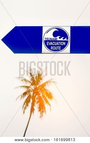Tsunami Evacuation Route Sign With Blur Palm Tree Background.