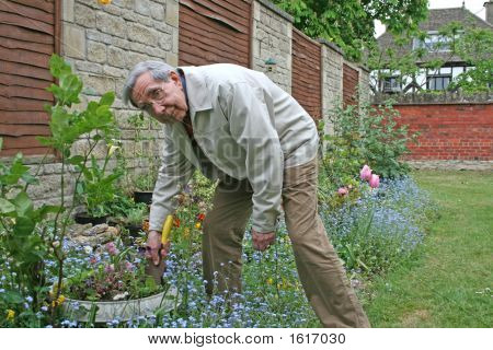Senior Citizen Gardening