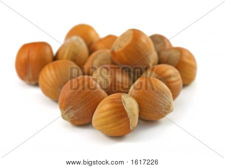 Hazelnuts In Shell On The White Background