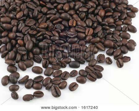 Coffee Beans Over The White Background