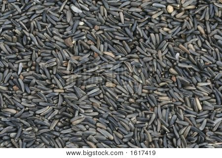 Niger Seed