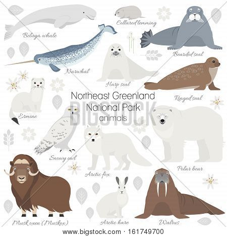 Greenland National park animal set. White polar bear, narwhal, whale, musk ox, seal, walrus, arctic fox, ermine rabbit arctic hare