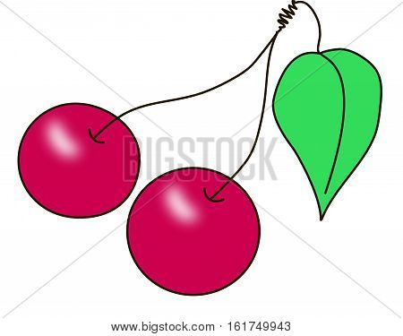 A pair of red ripe cherries on the fruit stems with green leaf on a white background.