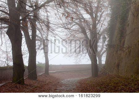 Misty path on old fortress after autumn rain
