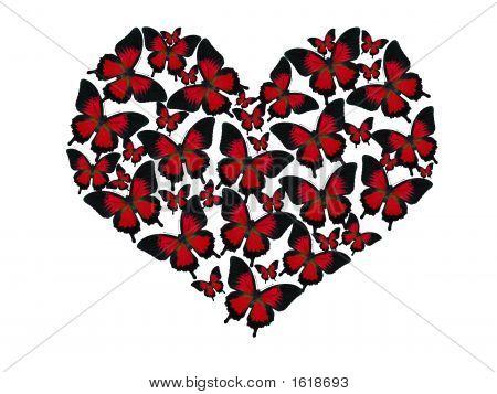Butterflies Heart