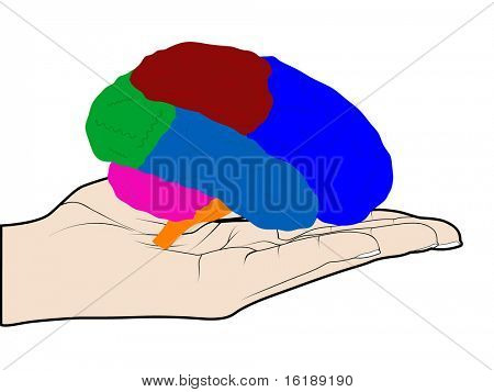 (raster image of vector) human brain in hand
