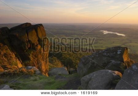 The Roaches In The Last Light Of The Day