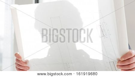 Mature businessman reading blueprint in new office