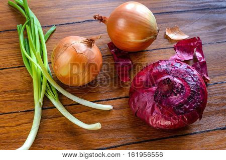 In the frame of two bulbs of onion big onion red onion green onion leek.
