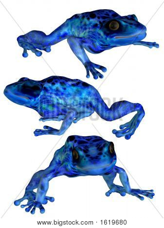 The3Frogs