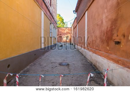 Narrow alleyway with several cats and dogs