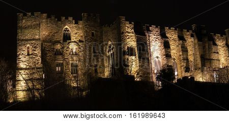 flood lit castle at night surrounded by trees