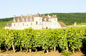 stock photo of clos  - Clos Blanc De Vougeot Castle - JPG