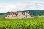 stock photo of clos  - Clos Blanc De Vougeot Castle - JPG