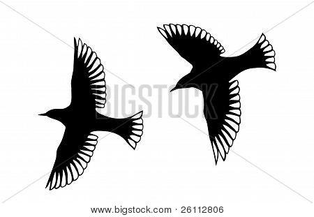 Angel Bird Silhouettes