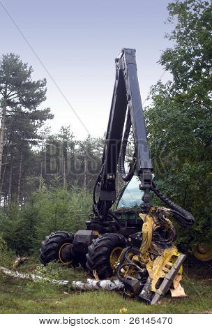 A tractor with a wood cutting device attached to it, used for logging and maintenance of forests