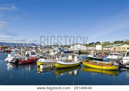 The arctic harbor of Husavik along the Skjalfandi bay, Iceland, with a colorful array of fishing ships, from where tourists are taken on whale watching trips