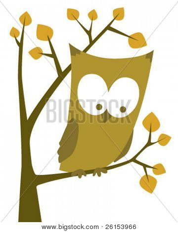 Owl at tree