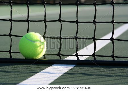 Ball against the net