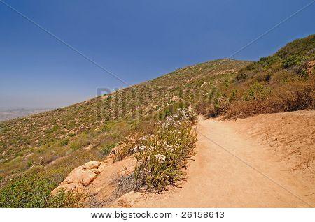 Trail On A Desert Mountain