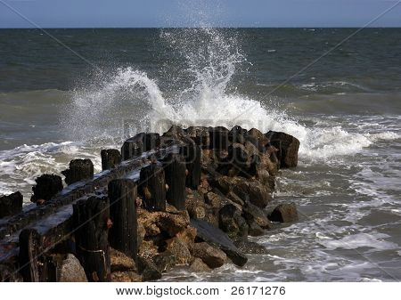 Edisto Spray