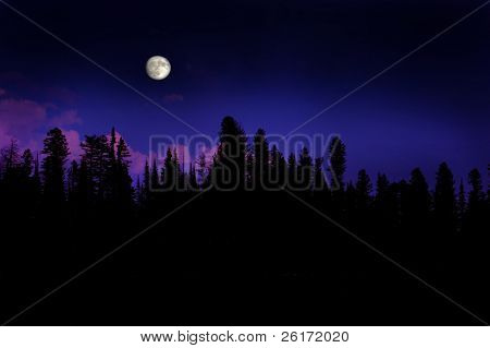 Moonrise over pine trees in the mountains