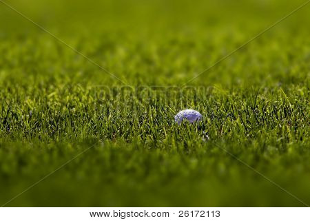 Golfball lying in lush green grass on the fairway