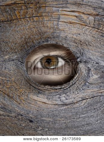 Person's eye looking through a hole in wood