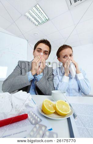 Imagem de parceiros de negócios doente assoar o nariz e olhando para câmera no escritório