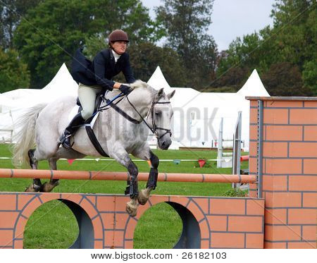 Show Jumper at the New Zealand Horse of the Year competitions 2008