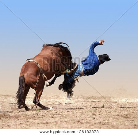 Loose Girth Causing a Cowboy to Fall isolated with clipping path