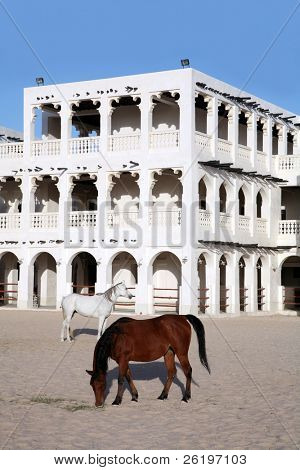 Purebred Arabian horses in a paddock opposite the Emiri Diwan palace in central Doha. The ornate stables behind are part of the redeveloped Souq Waqif market area