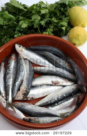 Sardines (pilchards) in a rustic bowl with their heads and innards removed and lemon and parsley beside them. Sardines arehigh in Omega-3 oils and Vitamin D.