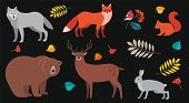Forest Animals And Plants Set: Bear, Wolf, Fox, Deer, Wolf, Hare, Squirrel, Bullfinch On Rowan Branc poster