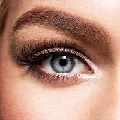 Macro Shot of Young  Womans Beautiful Eye. Elegance CloseUp of Female Eye with Classic MakeUp. Beau poster