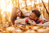 Beautiful Smiling Couple Enjoying In Sunny Forest In Autumn Colors. They Are Lying Down On The Fall  poster