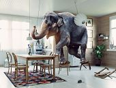 Frightened elephant runs from mouse to table. Photo and media mixed creative combination poster
