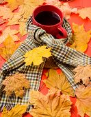 Warming Beverage. Mug Of Tea Surrounded By Scarf Red Background With Fallen Maple Leaves And Fir Con poster