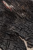 Black Burnt Wooden Board Table Surface. Burnt Wooden Board Texture. Burned Scratched Hardwood Surfac poster