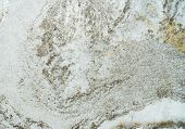 Rough Concrete Wall Texture Background. Gray And White Cement Wall. Empty Dirty Cement Wall Abstract poster