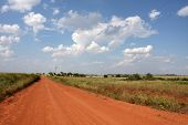 Red Dirt Country Road in Western Oklahoma