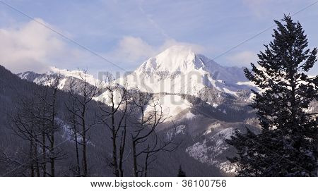 Colorado Mountain Peak With Tree